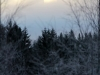 Joulun kalpea aurinko